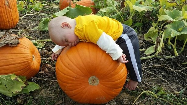cute-Babies-in-Pumpkins