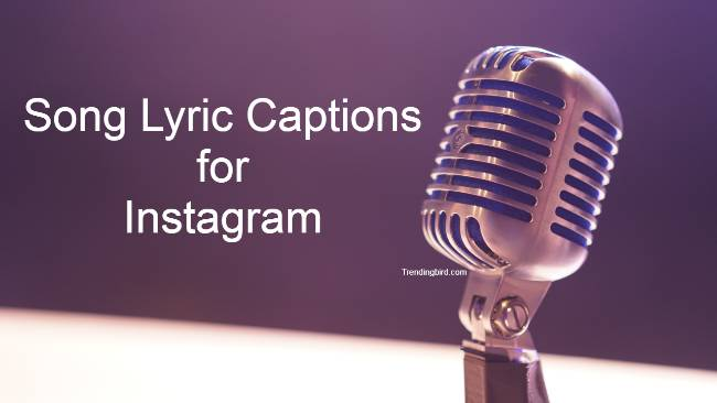 Popular Cute Instagram Captions Quotes For Song Lyrics 2020 Visit hindiraag to check the best collection of hindi romantic songs brilliantly describe the feeling of love while patriotic songs inspire the feeling of patriotism and light love for the nation. cute instagram captions quotes