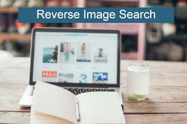 Reverse-Image-Search (1)