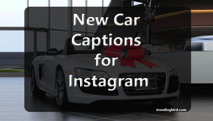 new-car-captions-for-Instagram