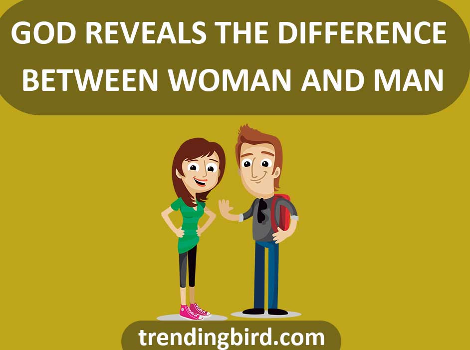 woman-and-man-difference